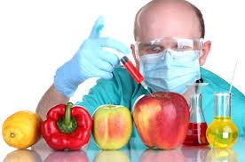 مرگ خاموش سلامتي با محصولات تراريخته